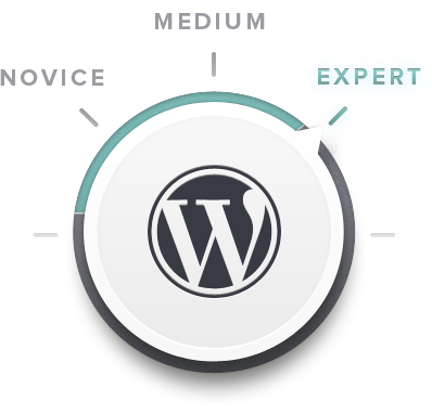 WORDPRESS THEMES<br/>&#038; SUPPORT